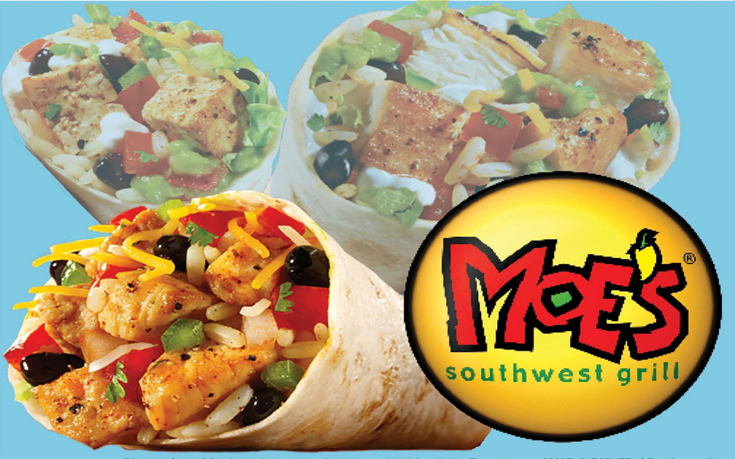 picture relating to Moes Printable Menu identified as Moes Monroe - Toledo Shipping Menu
